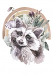 Plakat FRIENDS RACCOON